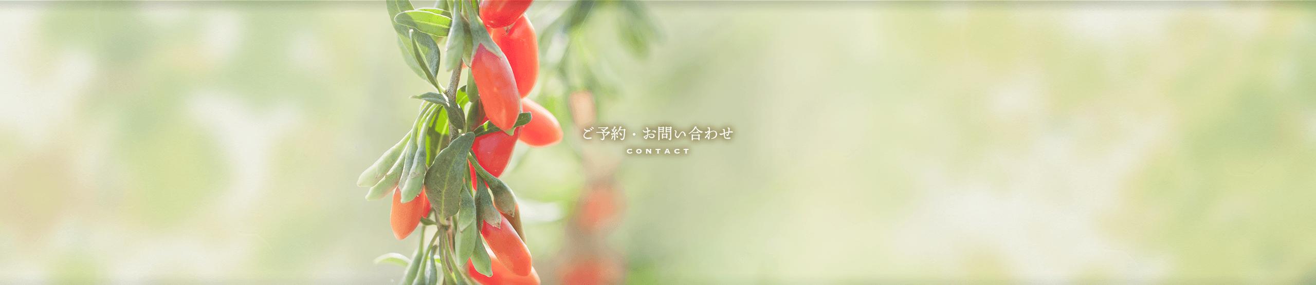漢方についてのご質問・ご予約について   症状に合わせご予算内で処方する仙台杜の都の漢方薬局「運龍堂」